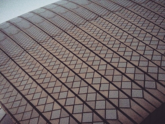 I always wondered what the Opera House roof was like. I finally got to see it up close and touch it. Tiles, tiles, and tiles.