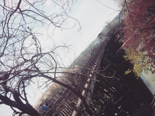The Bridge of Freedom was built to free 12,773 Korean War prisoners in 1953.